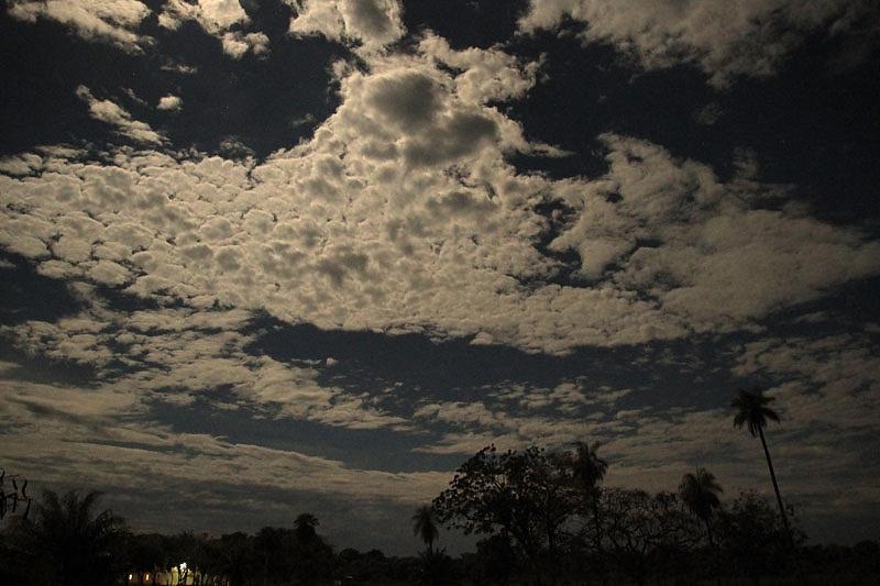 Nacht in de Pantanal